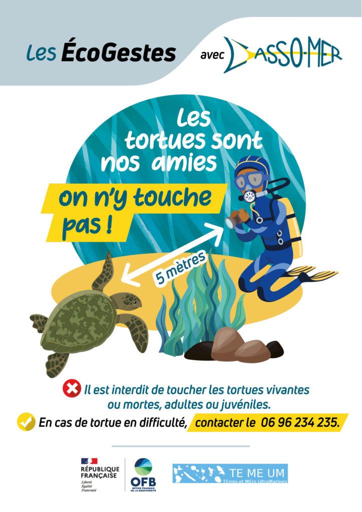 écogeste observation des tortues en Martinique